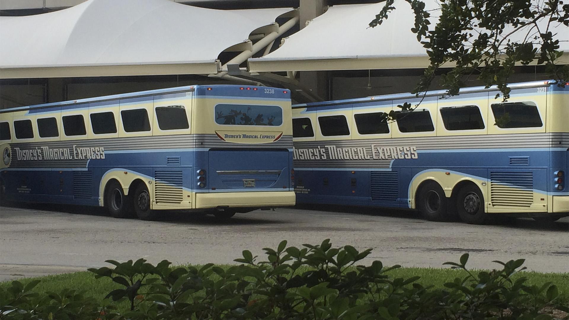 Para maior comodidade dos visitantes, a Disney disponibiliza um transporte próprio para os parques.