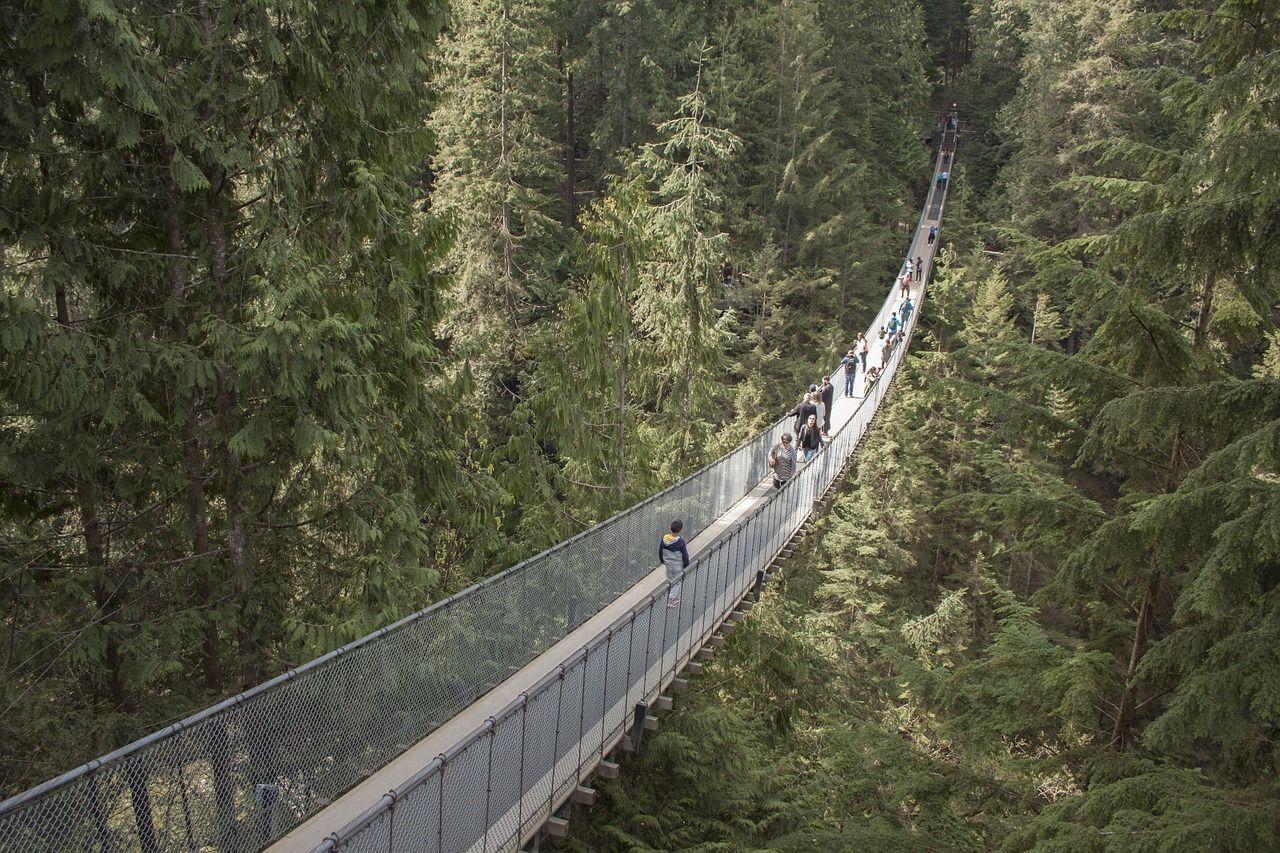 ponte suspensa viagem dos sonhos